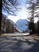 8 Mont Collon