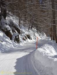 5 Cleared road