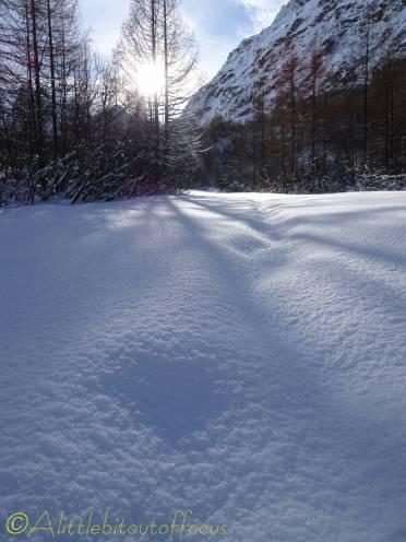 8 Deep snow