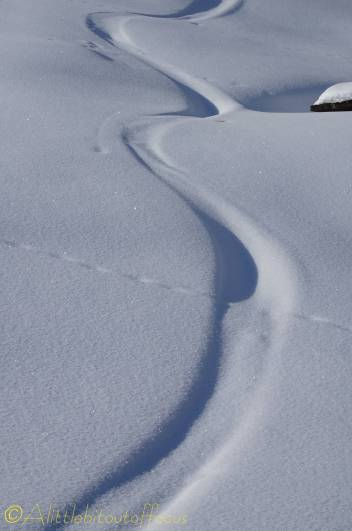 14 covered ski tracks