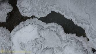 4 ice shapes