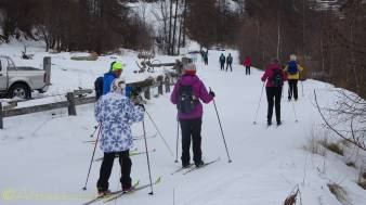 6 cross country skiers set off