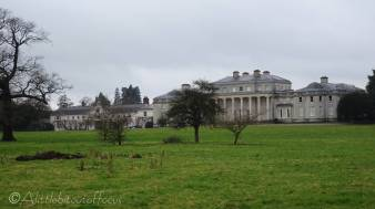 11 Shugborough Hall