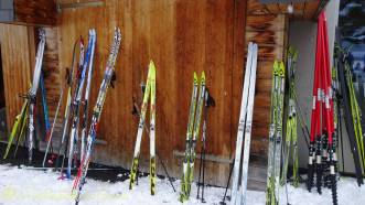 20 Cross country skis