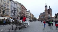 12 Horse drawn carriages in the main market square