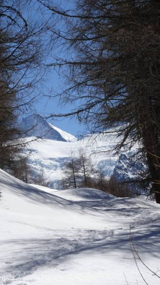 15 Distant Dent d'Herens