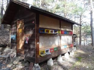 16 Bee shack