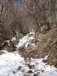 2 Snowy path