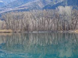 4 Reflections