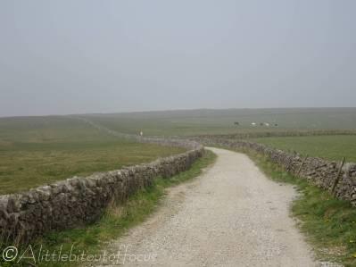 6 Open moorland track