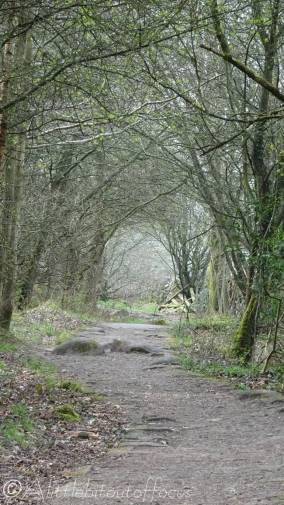 9 The path ahead