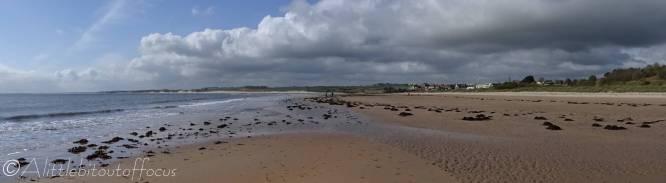 1 Alnmouth beach