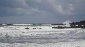23 Waves