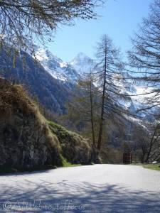 7 Quiet road