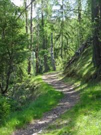 8 Path