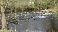 8 Weir