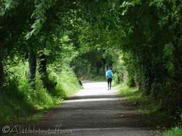 22 Camino walker
