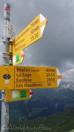 19 Col signpost