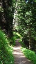 21 Path