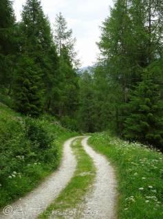 22 Track down to Les Haudères