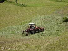 27 Hay making