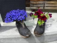 30 Flowery clogs