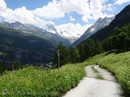 31 Descent track