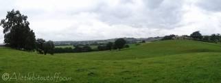 12 Farmland