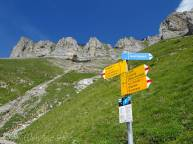 13 Signpost
