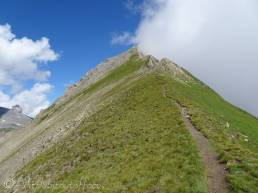 21 Path to the summit