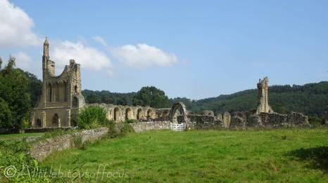 23 Byland Abbey