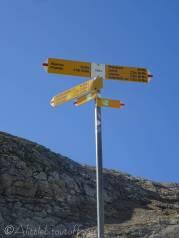 14 Signpost
