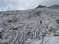 21 Limestone escarpment