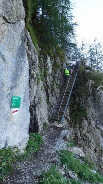 4 Descending the steps