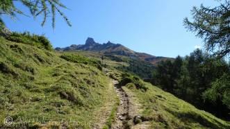 9 Path and La Maya