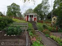 B5 Vegetable garden and shed