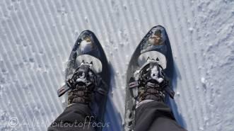 4 Snowshoes