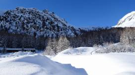 13 Fresh snow