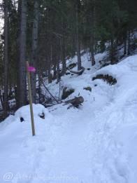 2 Path
