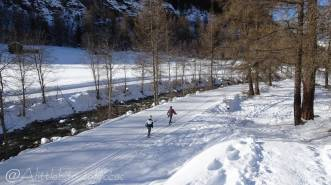 21 Cross-country skiers