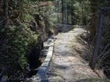 23 Sunny path