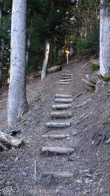 28 Steps