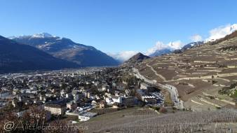 3 Looking back over Sion