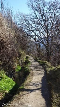 7 The path ahead
