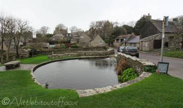 1 Village pond, Worth Matravers