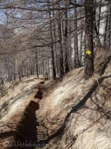 22 Descent path