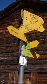 6 Signpost